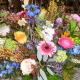 De Bloemenschoof